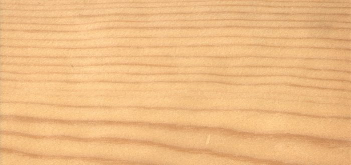 madera de pino rojo - madera de pino silvestre - semielaborados