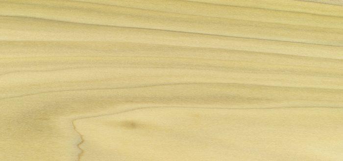 EN poplar wood