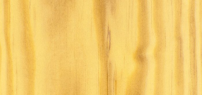 bois de pin jaune