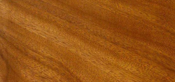 PT madeira de iroko