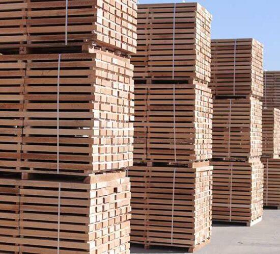 maderas económicas